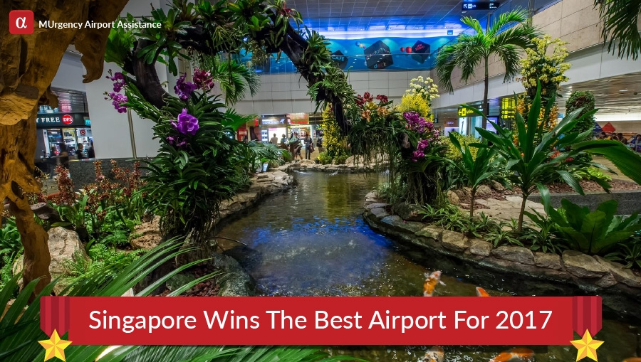 best airport in the world, best airport, singapore airport, singapore changi airport, best airport singapore airport, best airport singapore changi airport